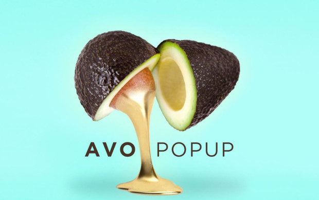 avocado-pop-up-e1459268018865