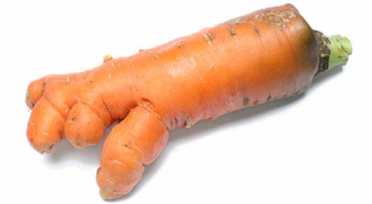 carotte-moche