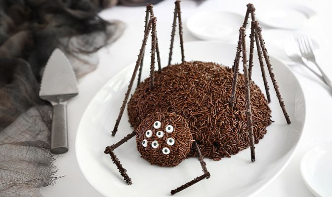 chocolate-spider-cake-beauty-1