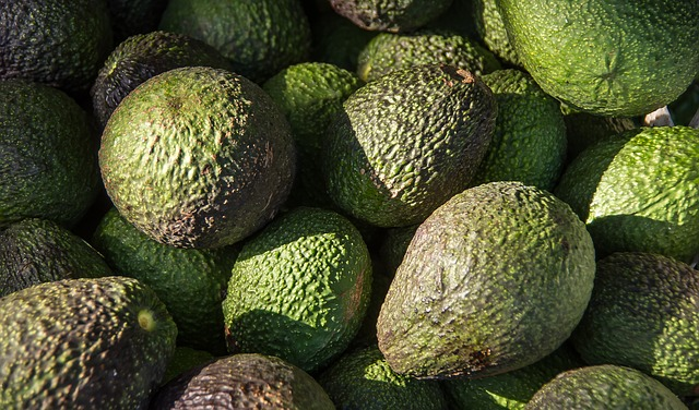 hass-avocado-1164173_640