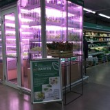 A Berlin, un supermarché installe une micro ferme dans ses rayons