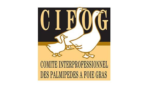 CIFOG