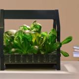 Ikea lance un kit pour jardiner à l'intérieur