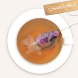 Des sachets de thé en forme de poisson rouge !