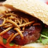 La Suisse va bientôt commercialiser un burger à base... d'insectes !