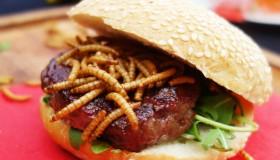 La Suisse va bientôt commercialiser un burger à base… d'insectes !