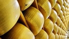 En Italie, le vol de fromage n'est pas un simple fait divers !