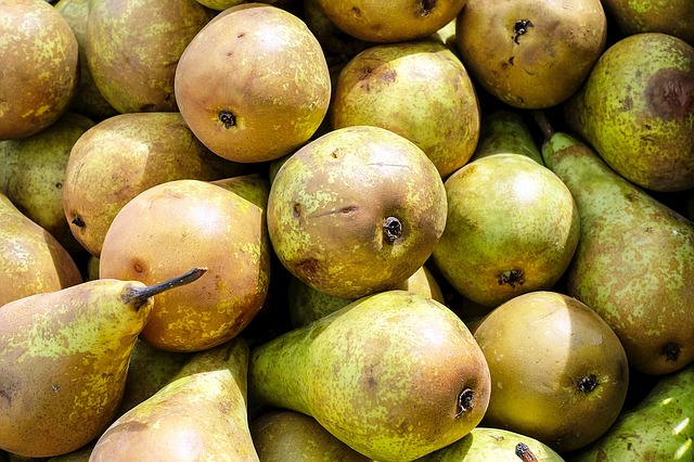 pears-1350462_640