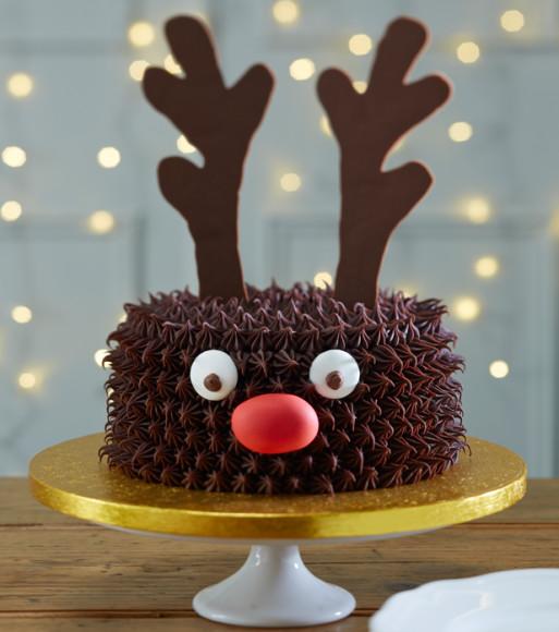 reindeer-cake-513x580