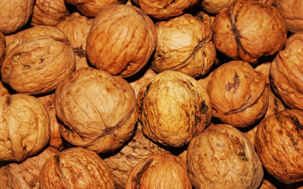 walnut-101425_1920